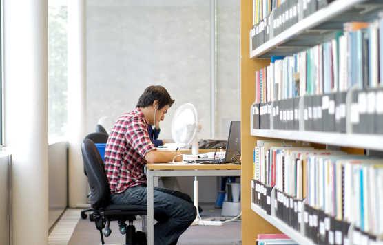 Экономика организации Дипломная работа на заказ Решатель теоретическая часть диплома
